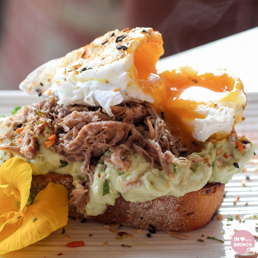 Zimari Smashed Avo Pulled Pork 2 Sq (1 of 1)